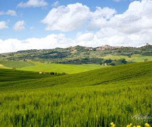 01-wedding-in-tuscany-74