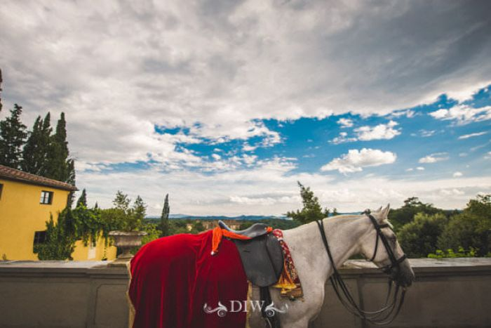 42 Indian wedding horse in Italy